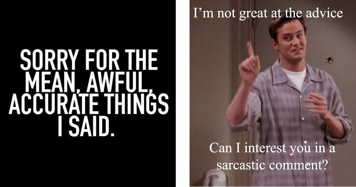 33 Witty Memes That Masters Of Sarcasm Will Love Witty Memes Memes Sarcastic Sarcastic