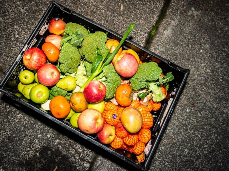 Bounty In The Bins The Dumpster Divers Rescuing Food North South Food Foraging Food Edible Plants Dumpster Diving