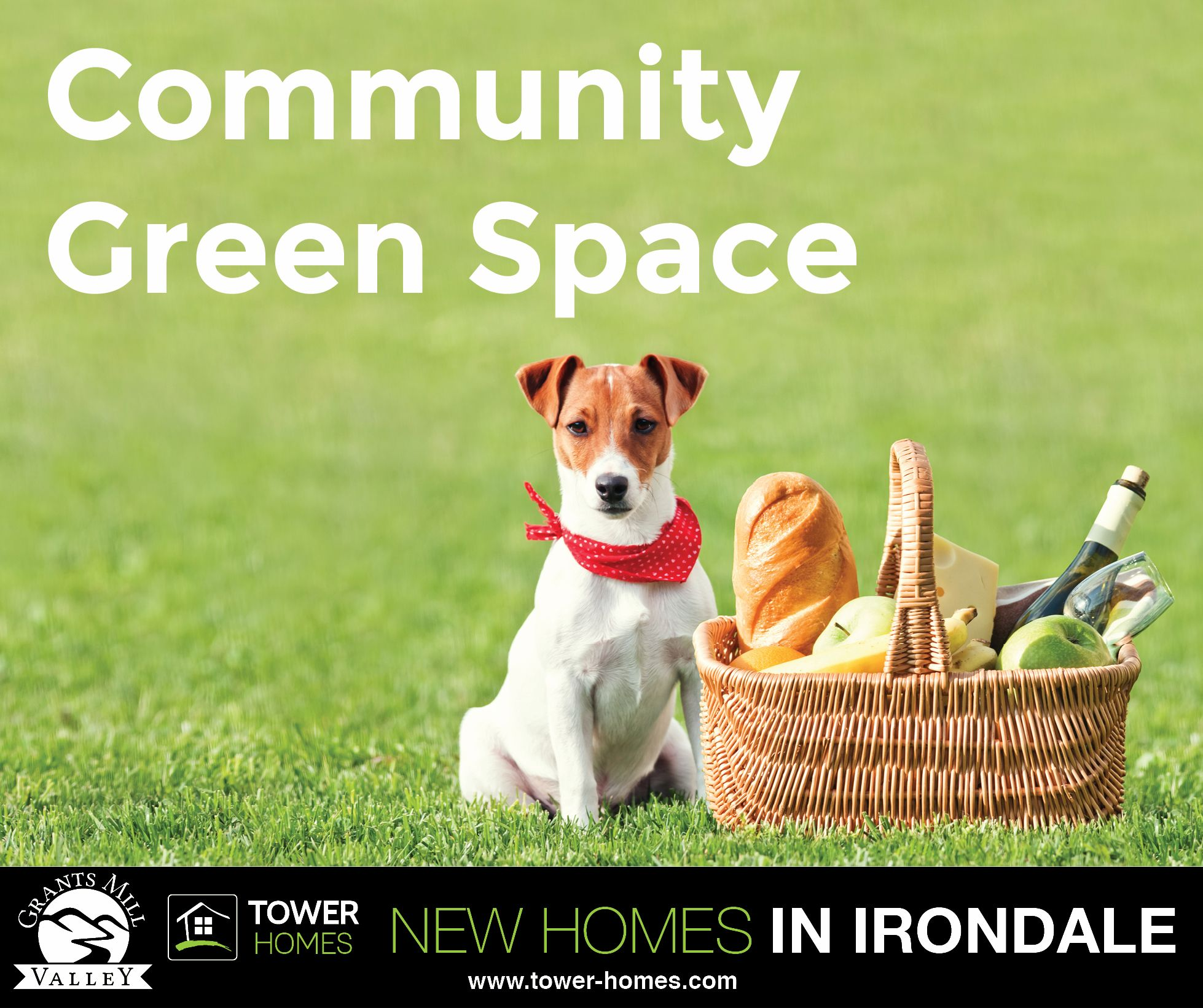Grants Mill Valley New Homes in Irondale (With images