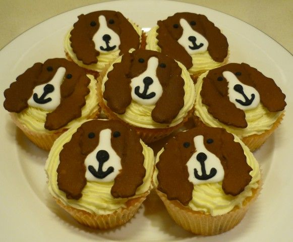 Springer Spaniel Puppies And Cake