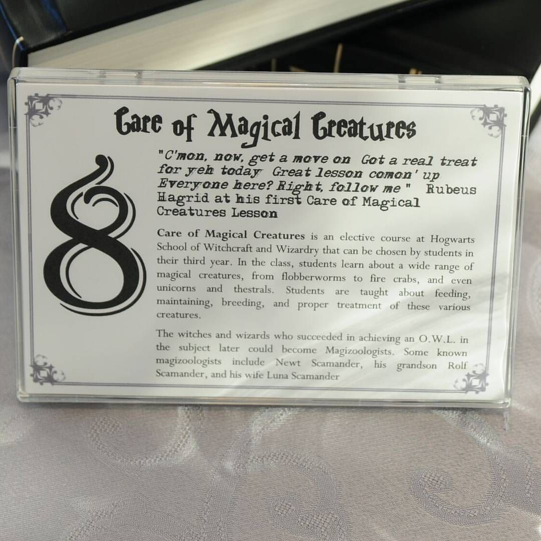 Table Marker For Table 8 Care Of Magical Creatures Class Radchatterton Harrypotterweddin Harry Potter Wedding Harry Potter Wedding Theme Harry Potter Party