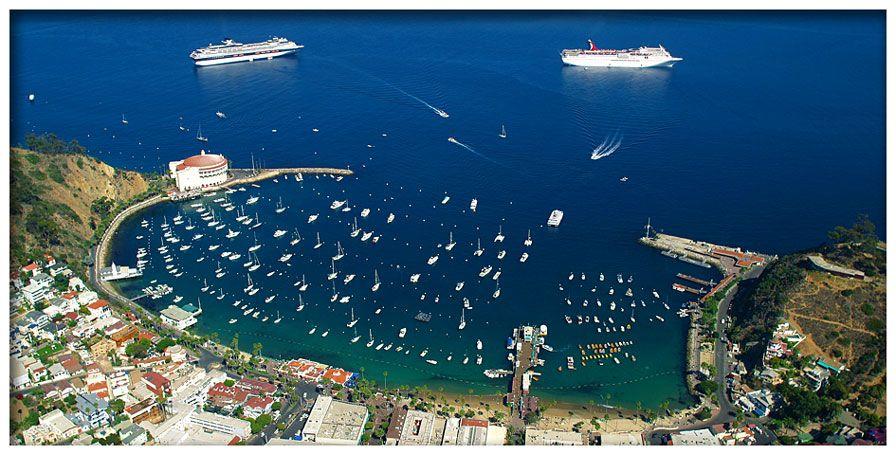 Hotel Villa Portofino Suites Rooms Whale Watching Trip Catalina Island Hotels Catalina Island