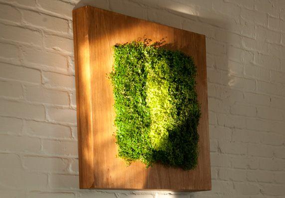 Obi Wandpflanzkasten Zimmerpflanzen Pflanzenwand Pflanzen
