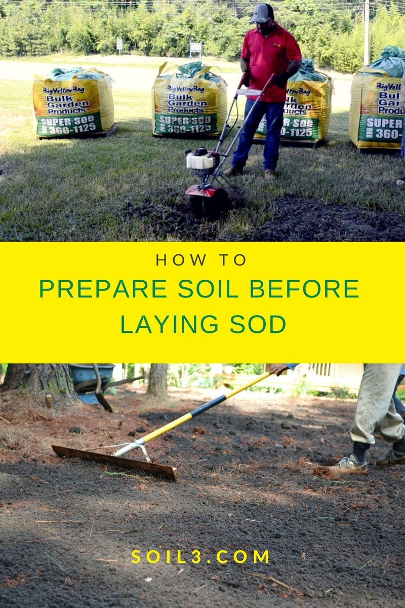 How To Prepare Soil For Sod Installation The Healthy Way Video
