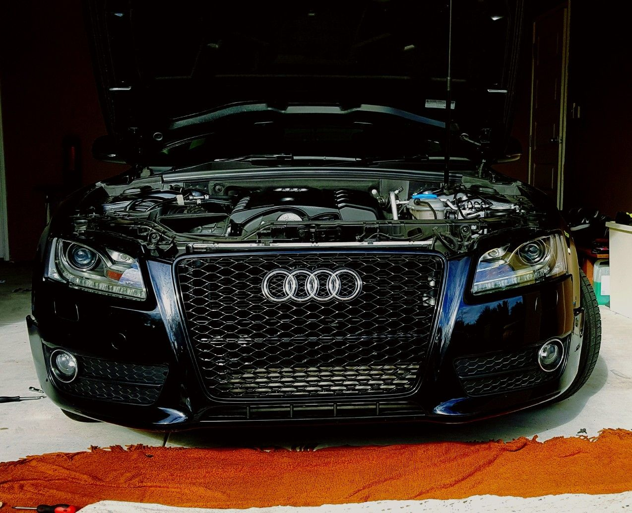 Audi A5 honeycomb grill | dogde | Audi a5, Audi, Marshall