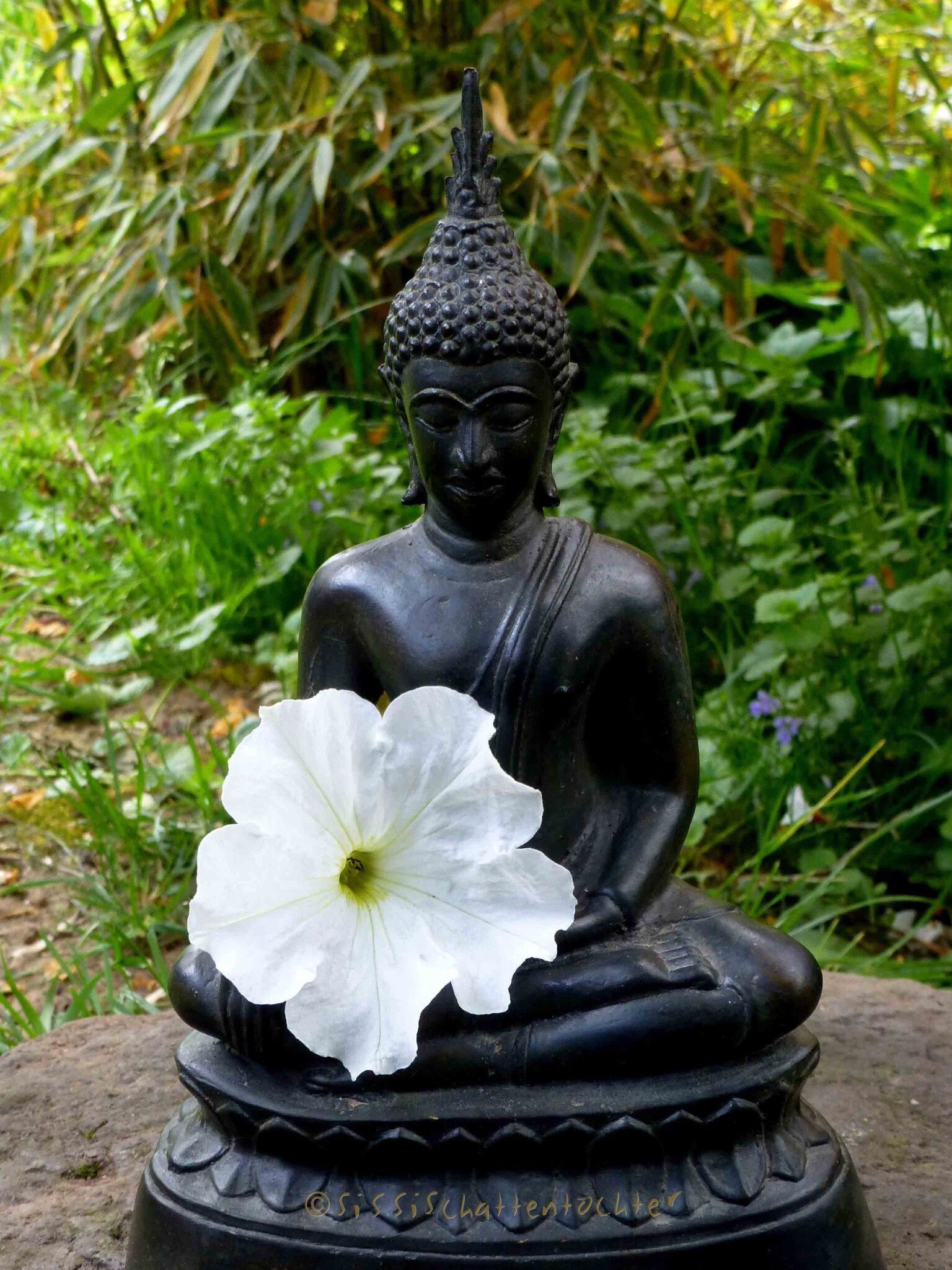 "Doubt everything. Find your own light."" ― Gautama Buddha | buadas ..."