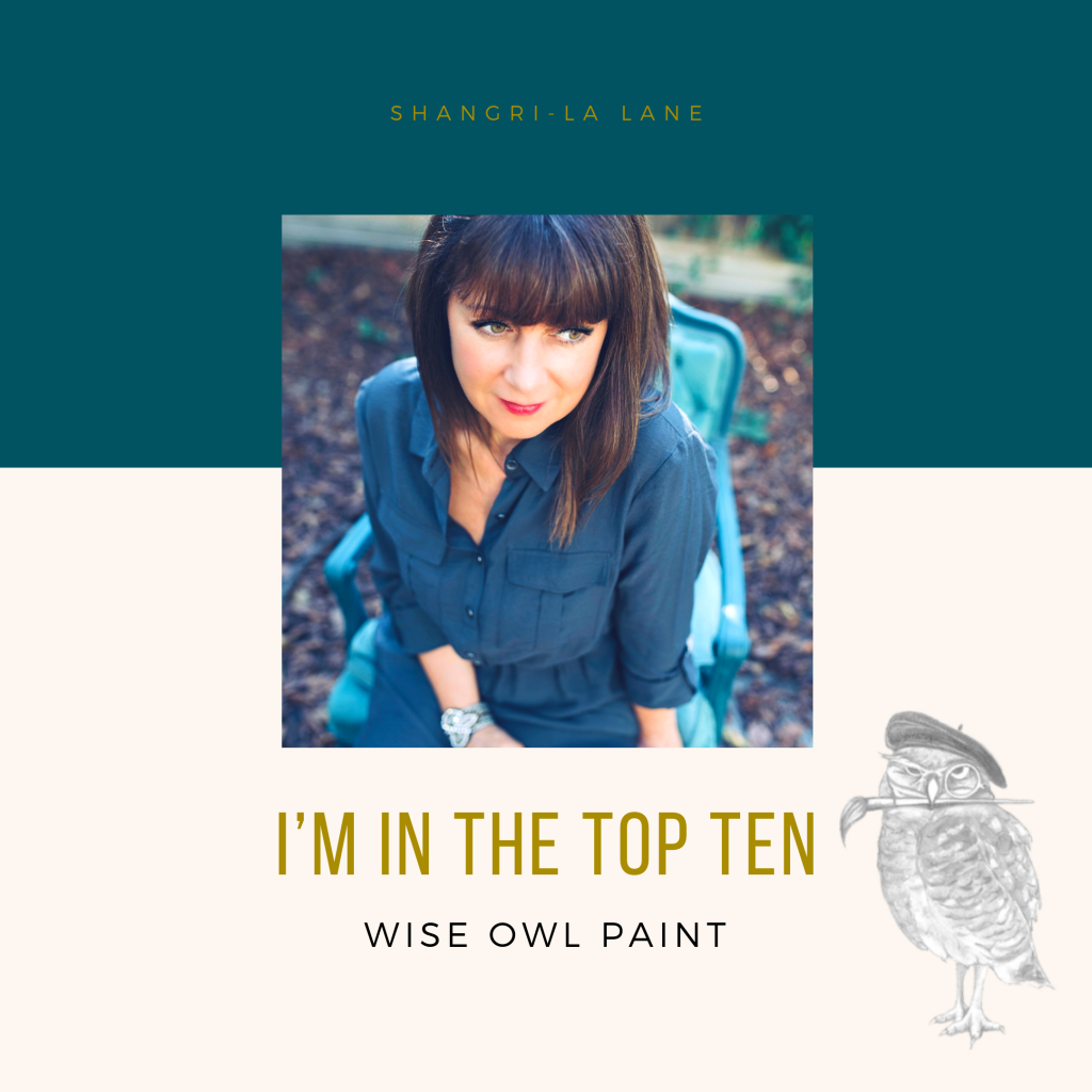 Wise Owl Paint, Iron Orchid