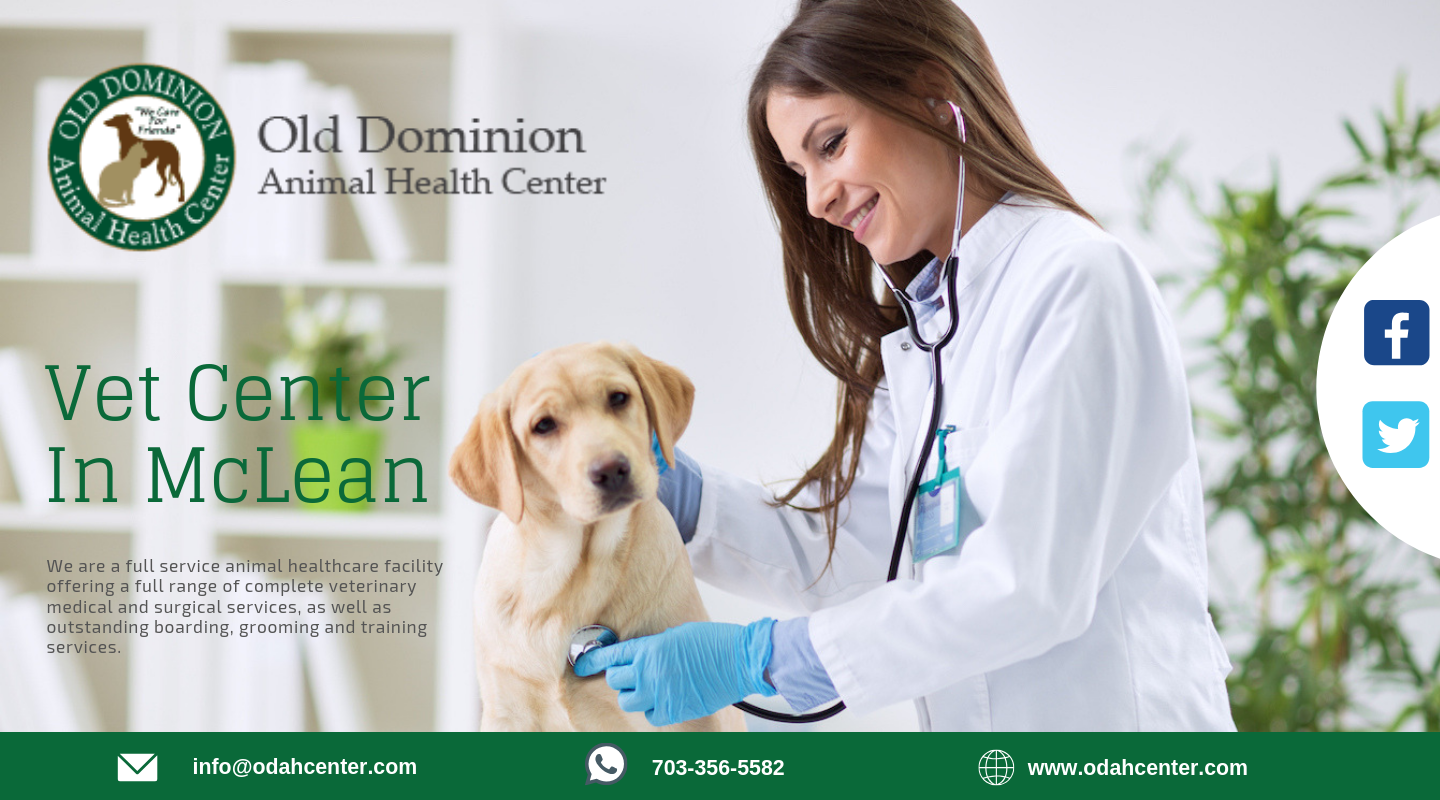 Odah Center Will Take Care And Look After Your Pet Family Member For Leading Pet Vet Center In Mclean Contact Us At 703 356 5 Pet Vet Dog Vet Care Pet Health