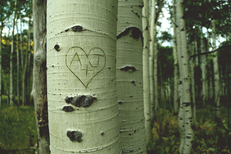 Photo by Kelsey Anne Art kelseyanneart.com
