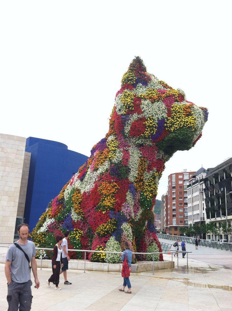 dog installation - Google Search