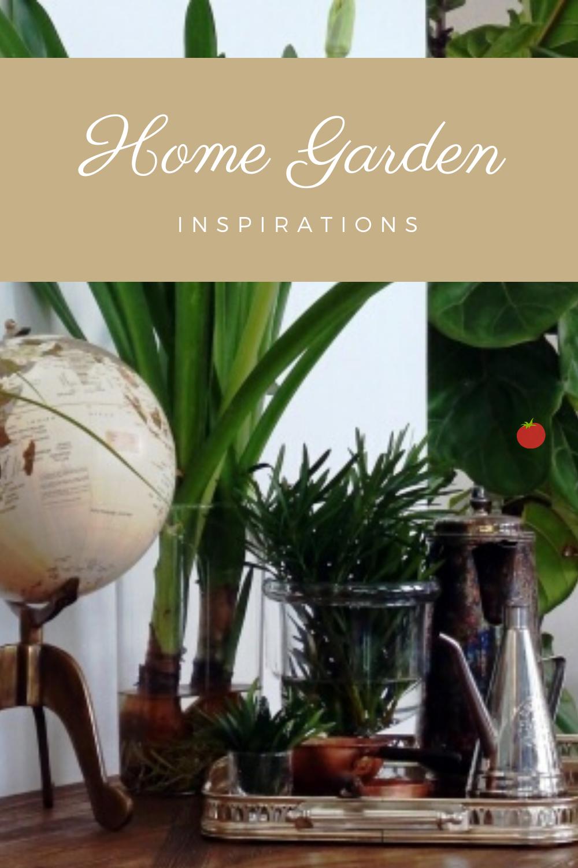 Best benefits of indoor gardens in 2020 Benefits of
