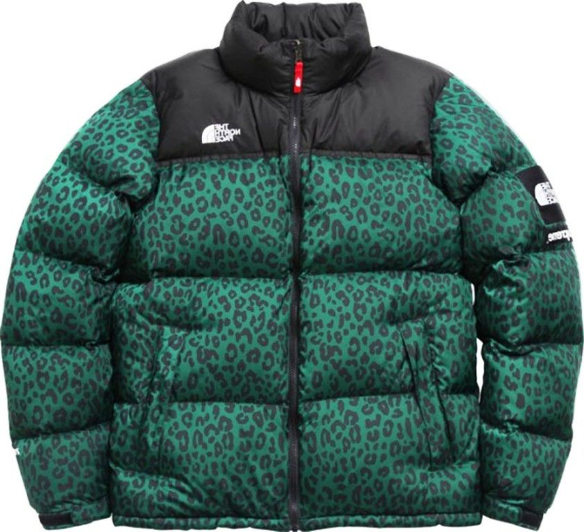 2dce7ddc1 cool North Face Bubble Jackets
