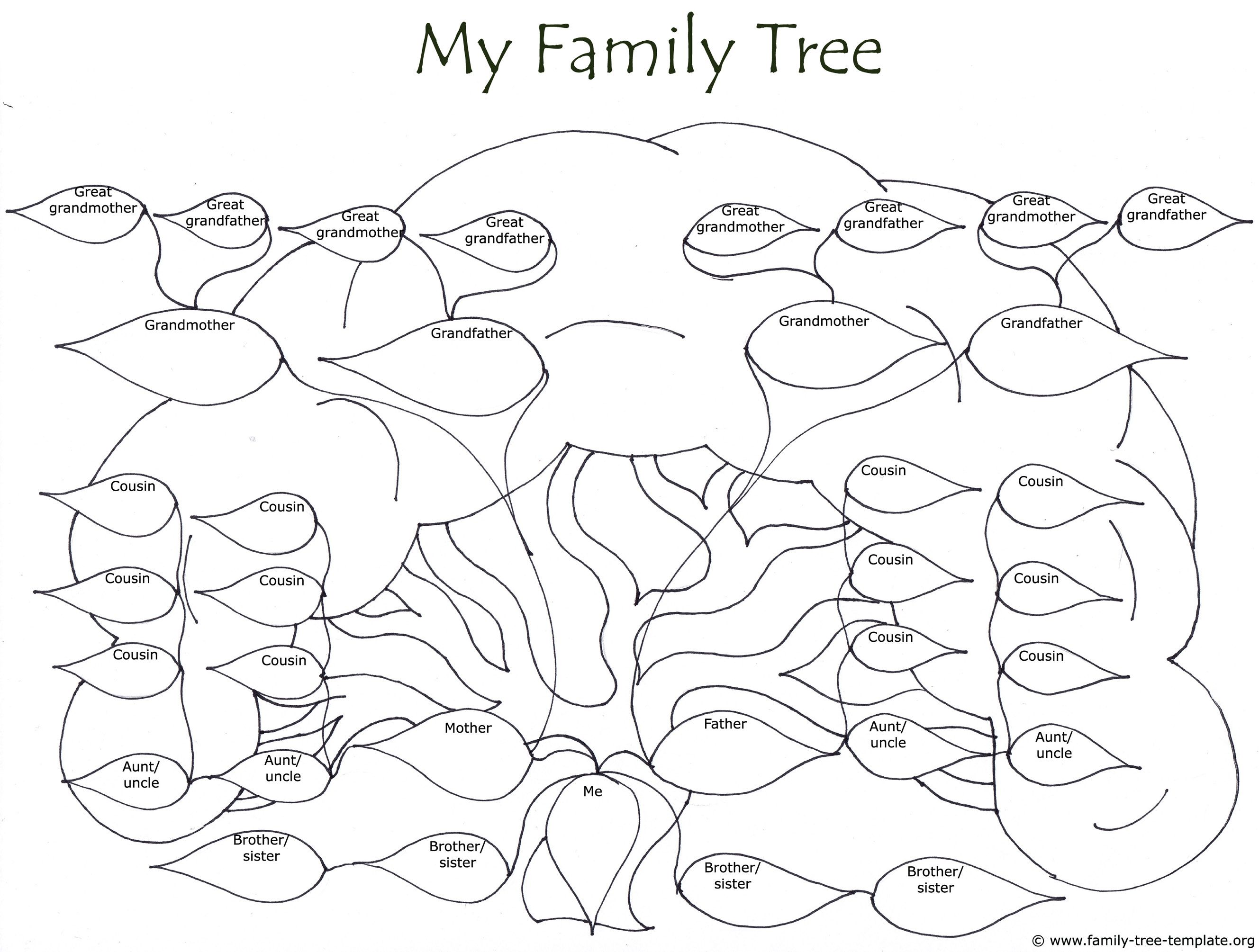 Huge Family Tree Drawing To Color Life Book