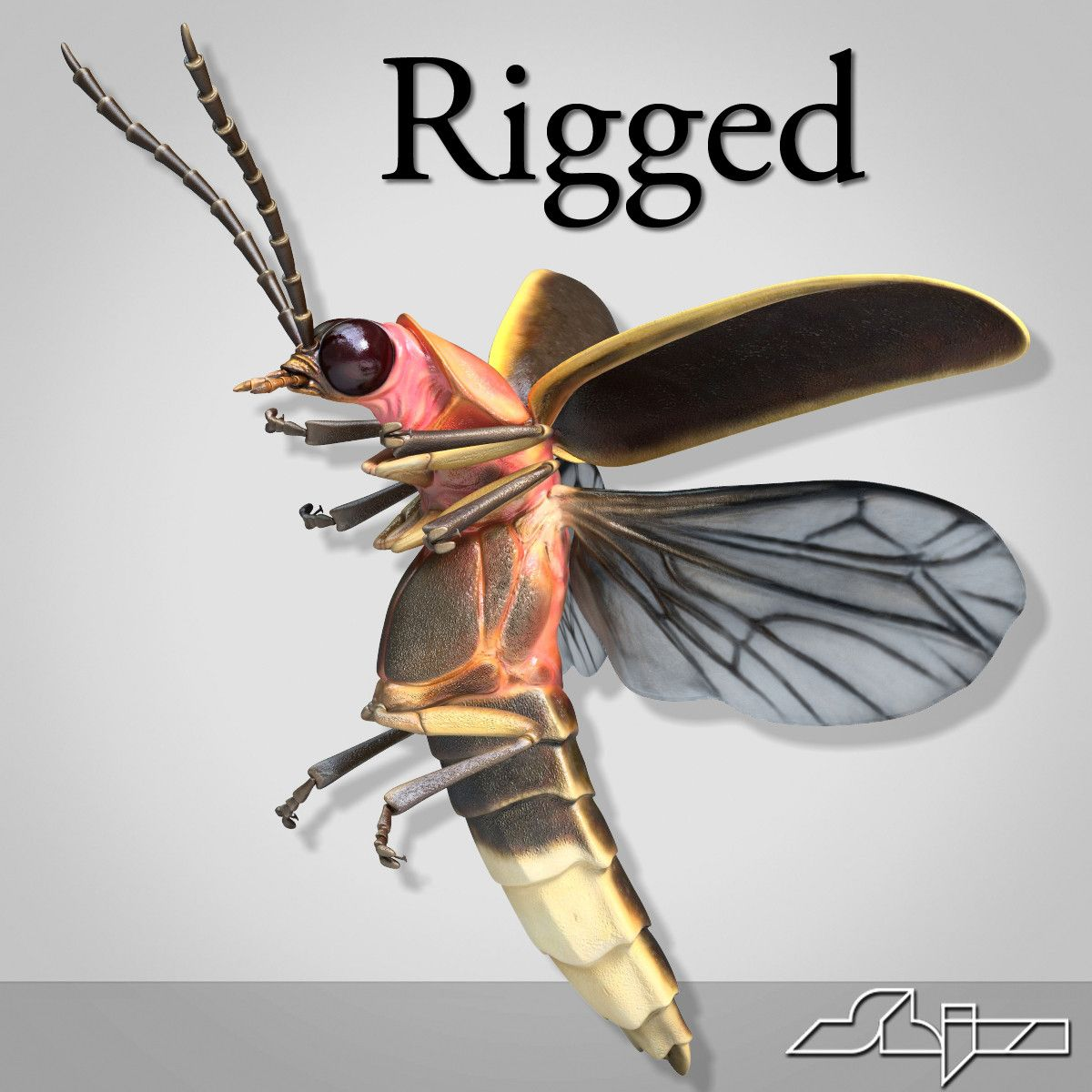firefly bug rigged bones max | Dragonfly/ insects/ frogs | Pinterest