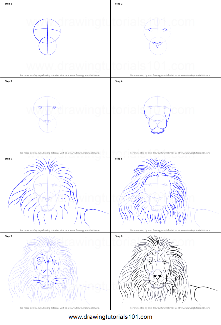How To Draw A Lions Face Printable Drawing Sheet By Drawingtutorials Com