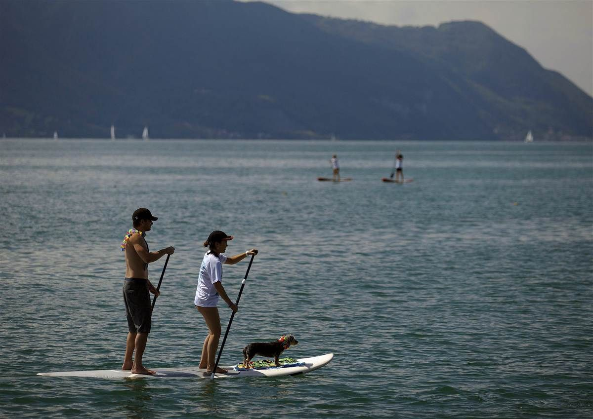 "Paddling for education A woman and a man paddle with their dog on a board during the ""Ride for the Cause"" Stand Up Paddle (SUP) charity event on Lake Leman in Montreux, near Geneva on September 2. The NGO ""Waves for Development"" collects funds for children education programs in Peru."