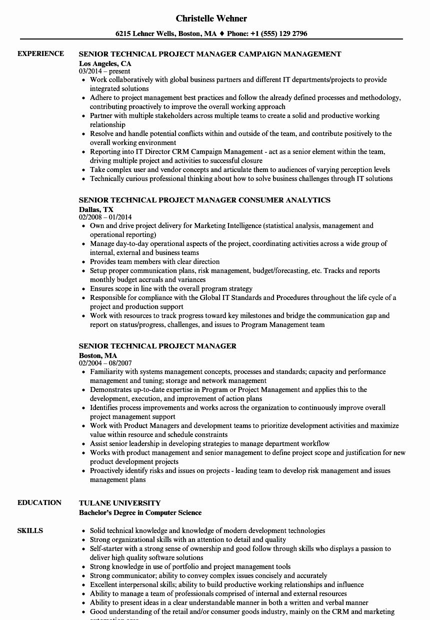 It Program Manager Resume New Senior Technical Project