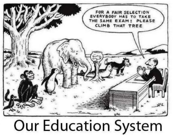 Our Education System e Size Fits All Exam