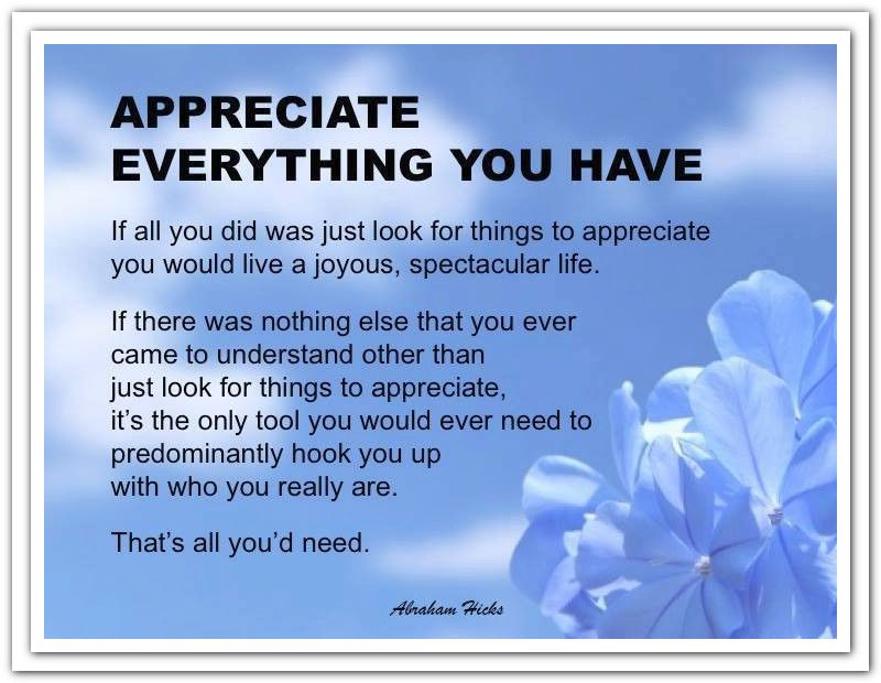 Appreciate everything you have If all you did was just look for things to appreciate, you would live a joyous, spectacular life. *Abraham-Hicks Quotes (AHQ959)
