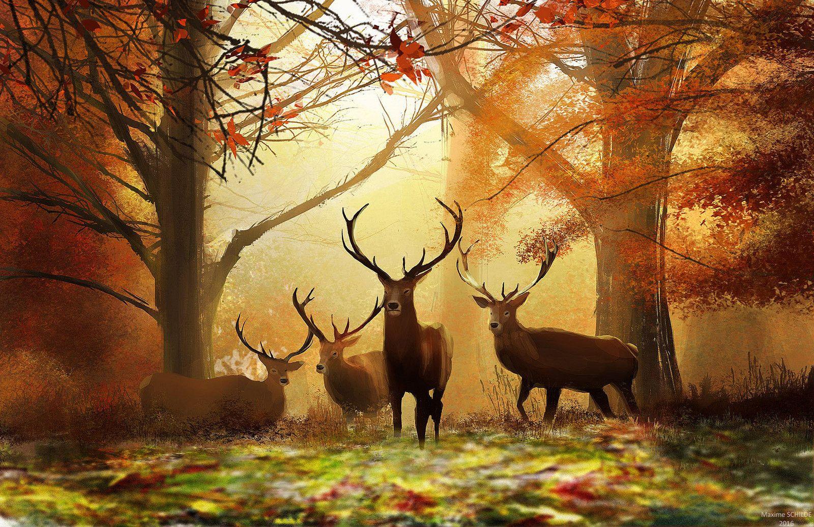 Forest, Maxime Schilde on ArtStation at https://www.artstation.com/artwork/WY3Vy