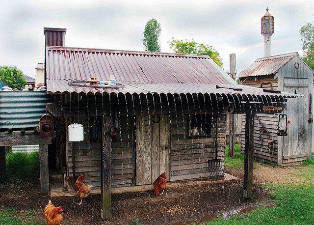 My dream chicken coop!