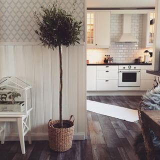 Instagram photo by jessieshem - Slår oss nu ner i soffan efter trädgårdsfix hela dagen!  Imorgon blir det en shoppingdag med syster, ska bli mysigt!  #älskarvariation