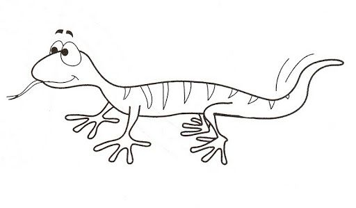 Drawings Of Lizards Coloring Coloring Coloring Pages Pinterest