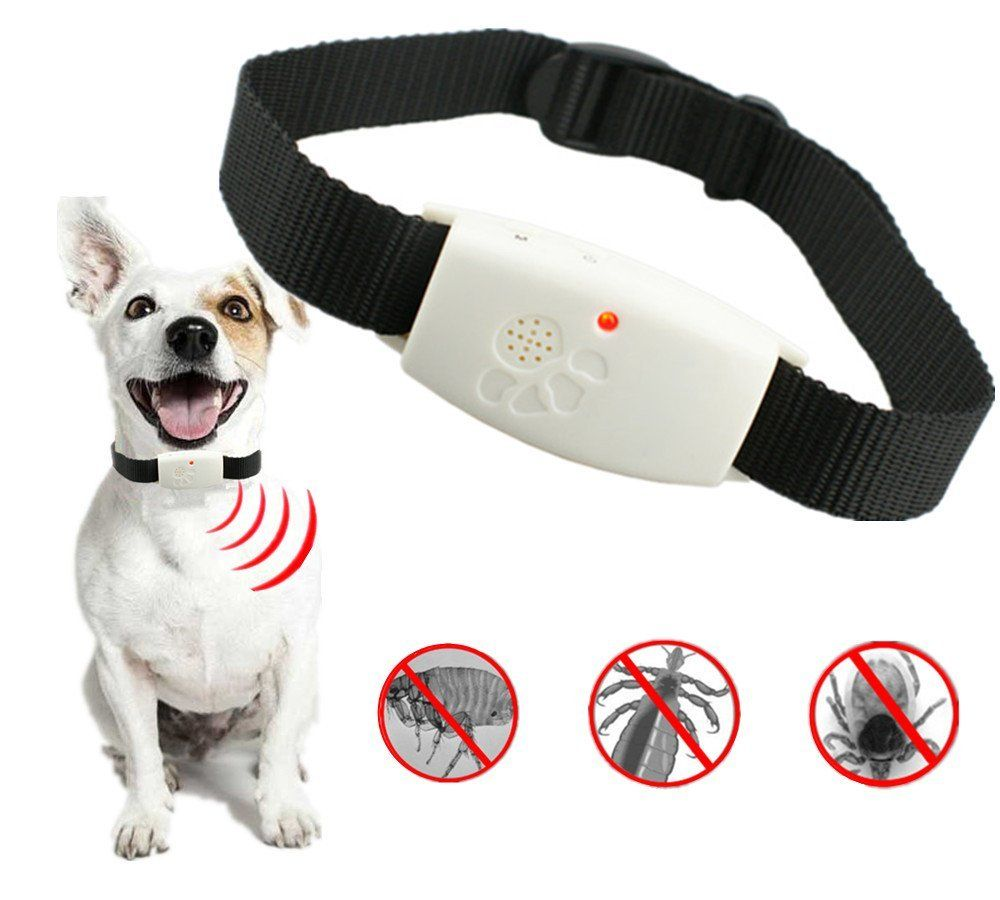 Matop Ultrasonic Pet Dog Cat Pest Repeller Collar Anti Fleas Ticks Natural Treatments Of Controlling And Prevention Insect Dog Flea Treatment Cat Fleas Fleas