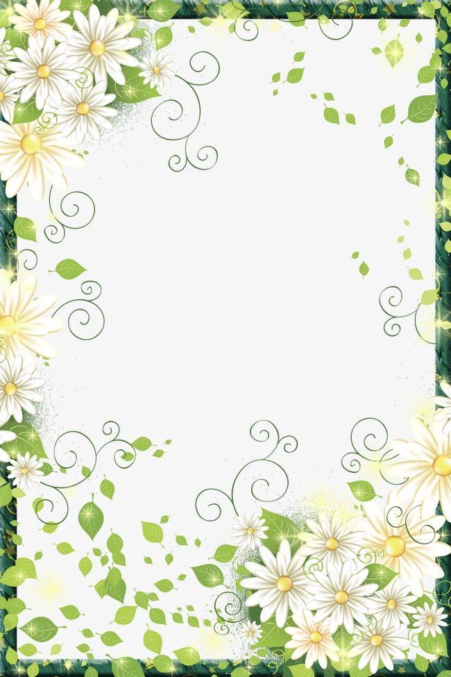 Pin by soprun design studio on pinterest flower borders beautiful flowers linda moldings pretty flowers flower beds mightylinksfo