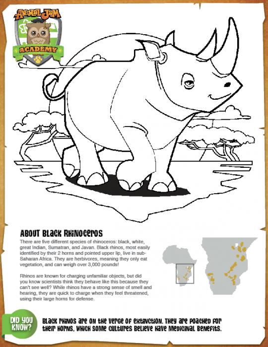 Black Rhino Coloring Page animaljam