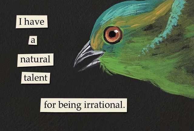 Troubled birds dump