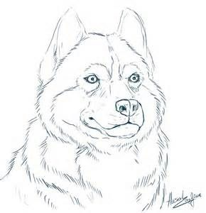 Siberian Husky Dog Coloring Pages 16 Png 290 300 Horse