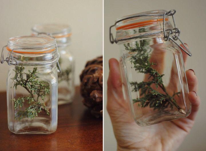 thrifted jars, evergreen sprigs