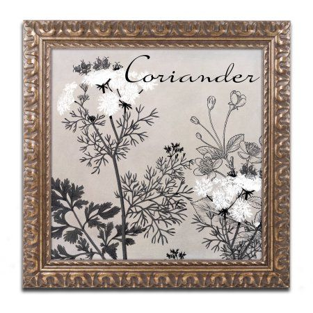 Trademark Fine Art Flowering Herbs IV Canvas Art by Color Bakery Gold Ornate Frame, Gray