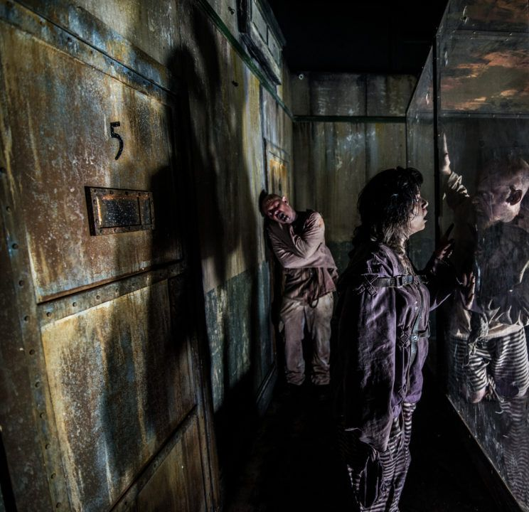 13th Floor And The Asylum Haunted Houses The Denver Ear Haunted House House Bugs 13th Floor