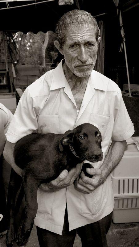 Traer Scott: Images of Street Dogs