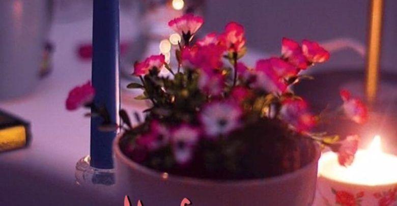 رسائل مسائية للحبيب والزوج رومانسية جدا Plants