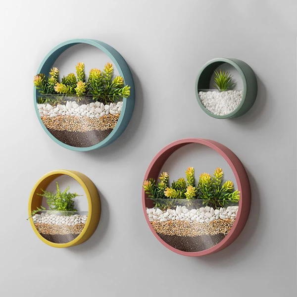Colorful And Creative Round Wall Planter 7 Colors 3 Sizes Thirsty House Plants Wall Vase Wall Planter Creative Walls