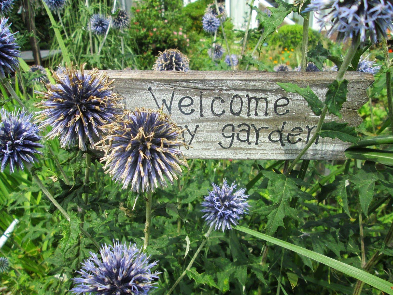 Een grensgeval: Onze tuin een jaar later :)