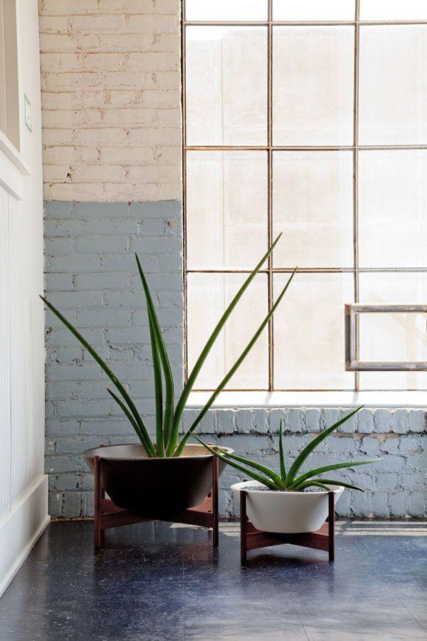 modernica case study wok with wood stand ceramic planter moderndecor