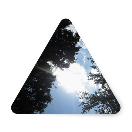 Nature Photo NJ CherryHill America NVN667 GIFTS FU Triangle Sticker