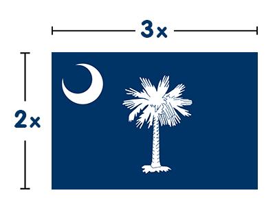 South Carolina Flag Colors South Carolina Flag Meaning South Carolina Flag Flag Colors South Carolina