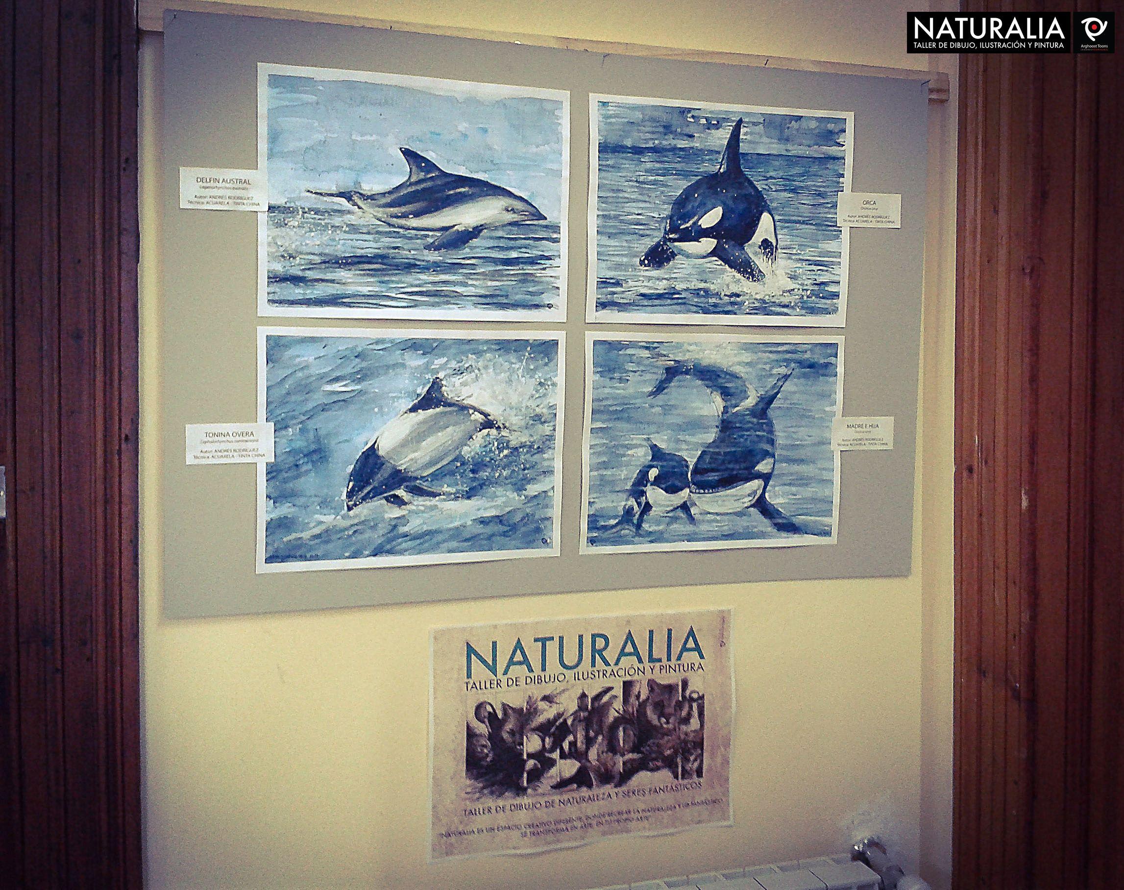 Expo Naturalia en el  marco del Curso Patagonico, Puerto Deseado 2014.
