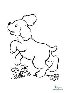 Dibujos Para Pintar Y Colorear Faciles Mas De 100 Pequeocio Animales Para Pintar Caricaturas De Animales Libro De Colores