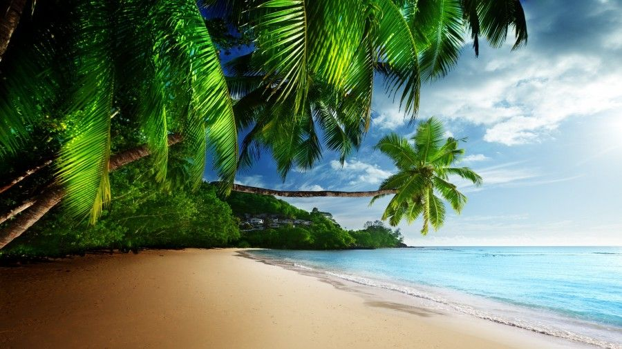 Tropical Beach Paradise 4k Ultra Hd Desktop Wallpaper Uploaded By Desktopwalls Beach Wallpaper Tropical Paradise Beach Tropical Background