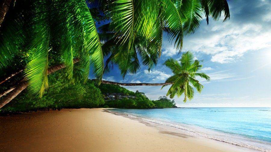 Tropical Beach Paradise 4K Ultra HD Desktop Wallpaper ...