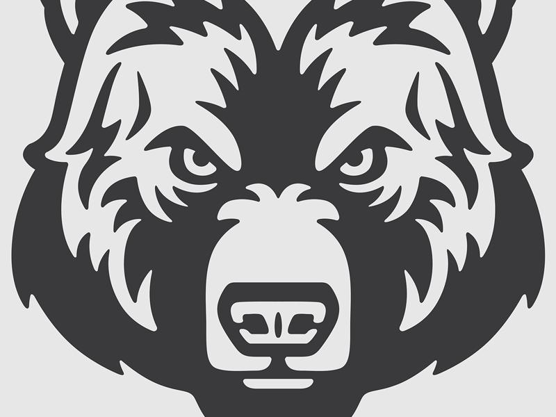 Bear Face Bear Face Drawing Bear Face Bear Illustration