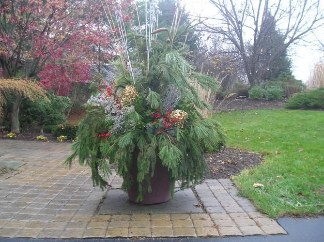 Large Container Gardening Winter Containers