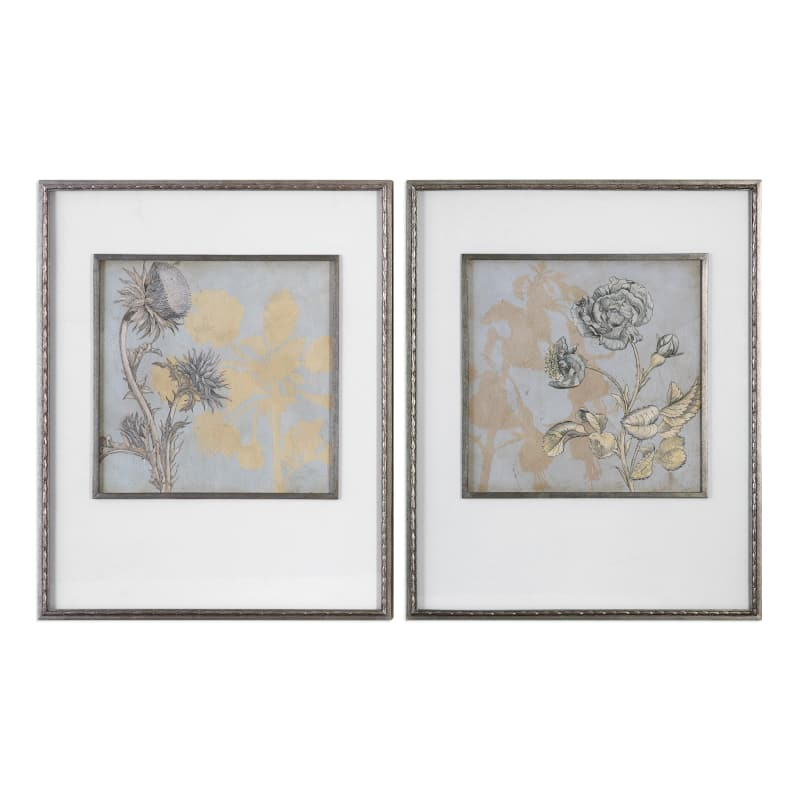 Uttermost 41562 Shadow Florals Two Piece Framed Print Set by Grace ...
