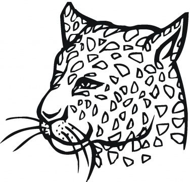 Cheetah Coloring Pages Super Coloring Coloring Pages For Kids Coloring Pages Cheetah Pictures